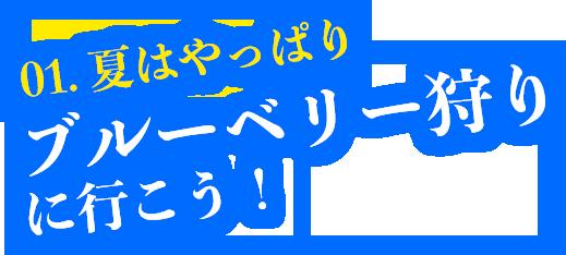 01.夏はやっぱりブルーベリー狩りに行こう!