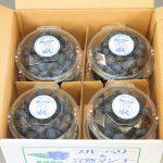特選ブルーベリー(100gパック8個入り)【生】