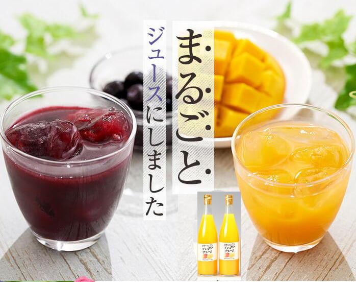 マンゴージュース 720g M-12