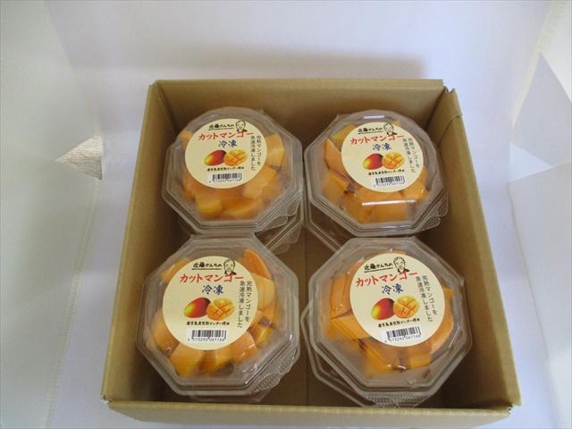 ★新発売★ カットマンゴー 冷凍 8パック B-5